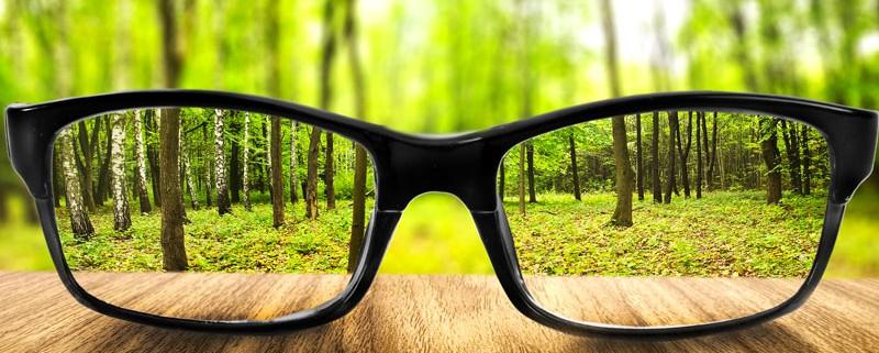 Twin Falls Eyecare - Glasses & Contact Lenses